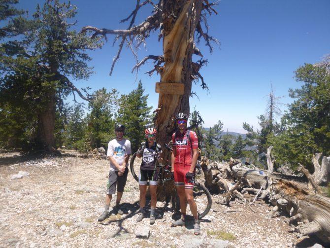 Unexpected Alpine Trails of SoCal, Part 1: Transverse Ranges