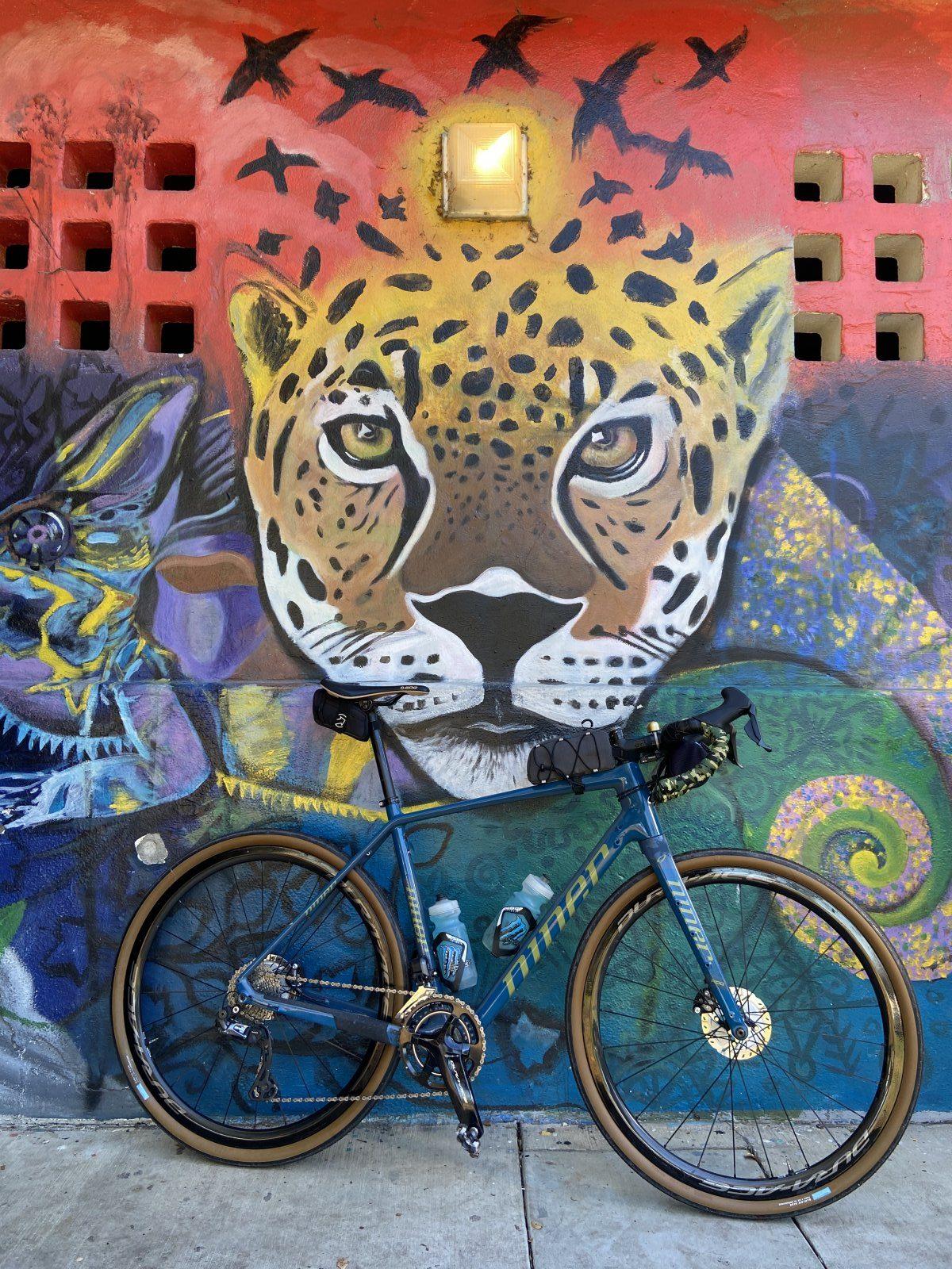 bike and mural